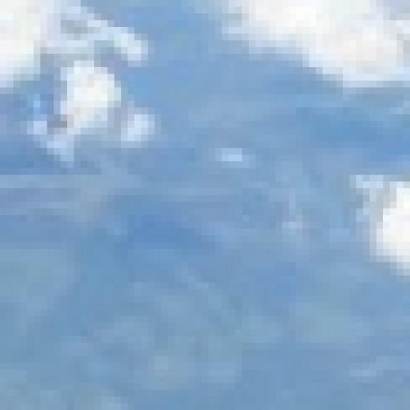 Foto del perfil de marcopolo