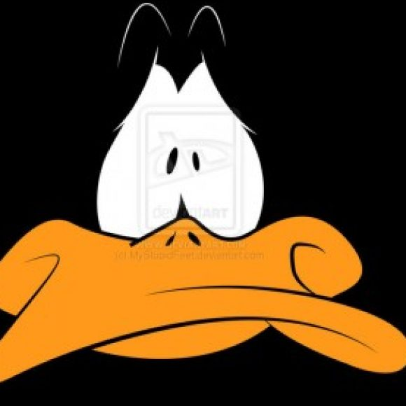 Foto del perfil de duck