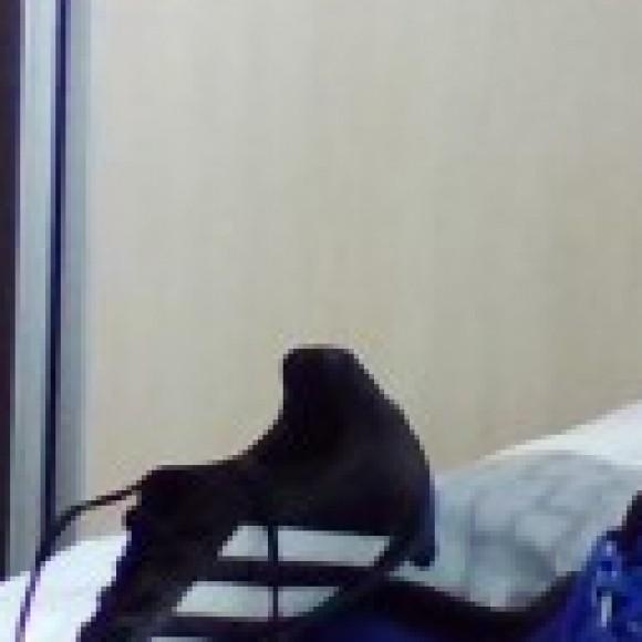 Foto del perfil de pedro silva